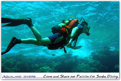 Come and Share our Passion for Scuba Diving